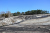 "(10Feb14)  arabia mountain, dekalb county parks, georgia.  <a href=""http://carpelumen.smugmug.com/Photography/2013/February13/27837518_jKJkNf#!i=2359385488&k=TFtmC6X"">one year ago.</a>  f/11, 1/500s, iso 500."