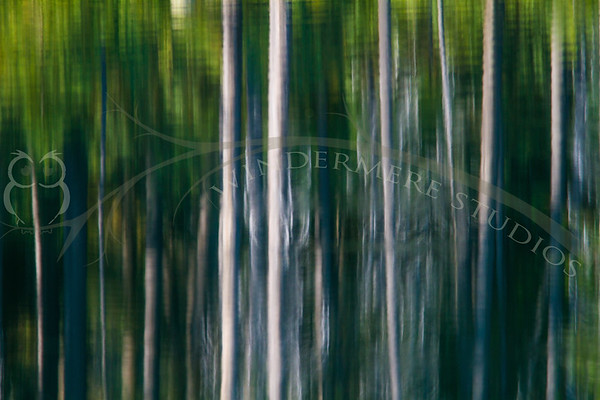 Reflections on Herbert Lake