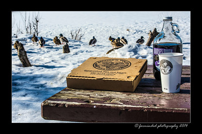 Moose's Tooth Spicy Pepperoni Pizza out at the Lagoon with some birds within Reach and some Root beer to finish it off