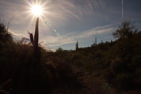 2015-01-18 Apache Trail Canyon Lake