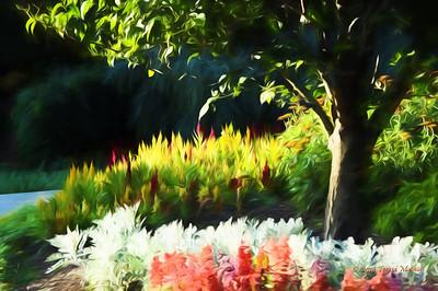 Day 360  - Deep Cut Gardens in Holmdel NJ.