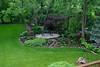 backyard IMG_1128_tonemapped