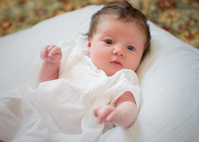 Ellison's Newborn