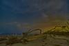 Cosmos Veiled over Driftwood Beach