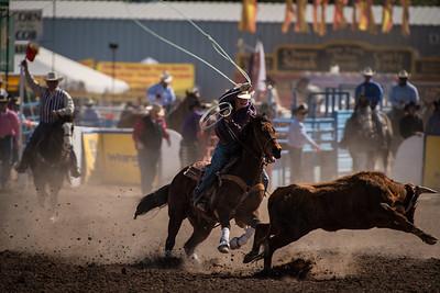 Tucson Rodeo (Feb 20, 2016)