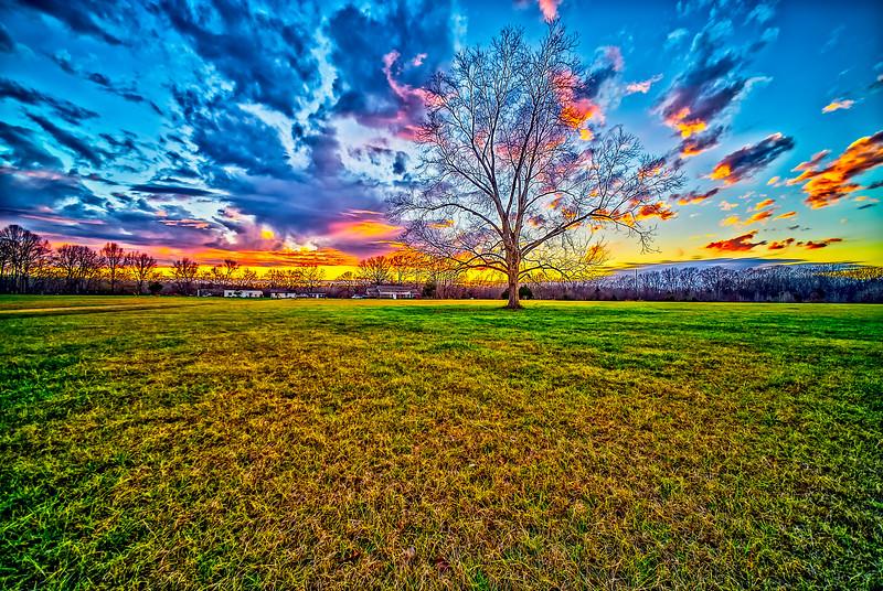 Plantation Front Yard Sunset