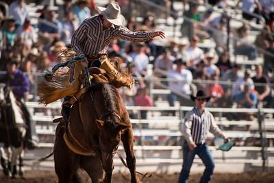 Tucson Rodeo Show (Feb 20, 2016)