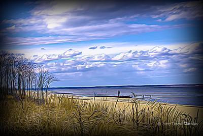Day 348 - Softer Beach
