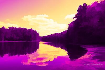 Day 362 - Purple Mania