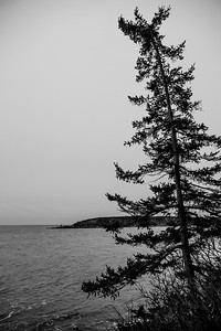 Owl's Head State Park, ME