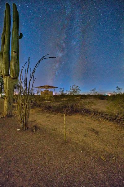 Casa Grande Ruins Milky Way Saguaro
