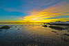 River Low Tide Sunset