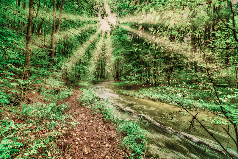 A Path to the Light