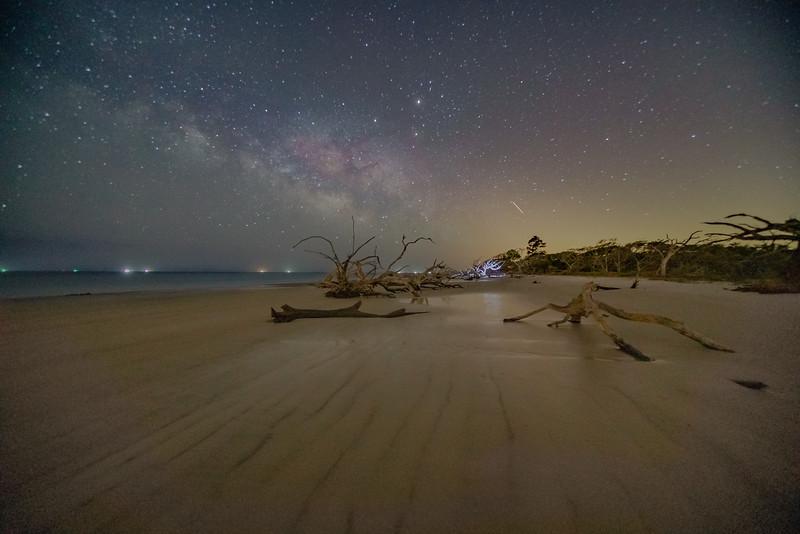 Foggy Night on Driftwood Beach