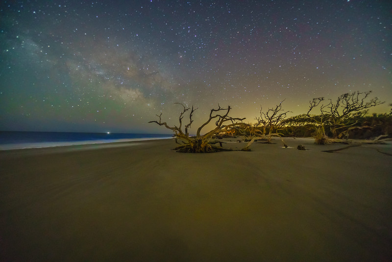 Night on Driftwood Beach