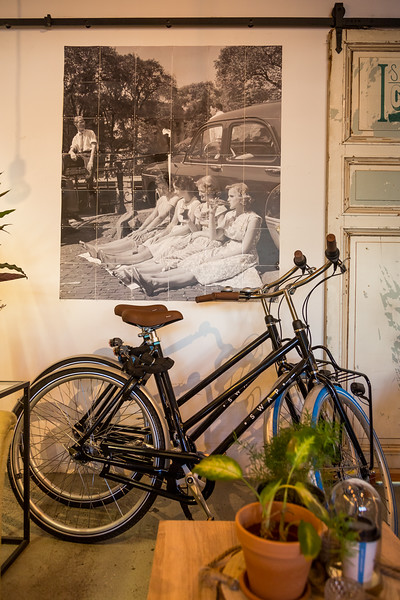 Cafe/bike rental