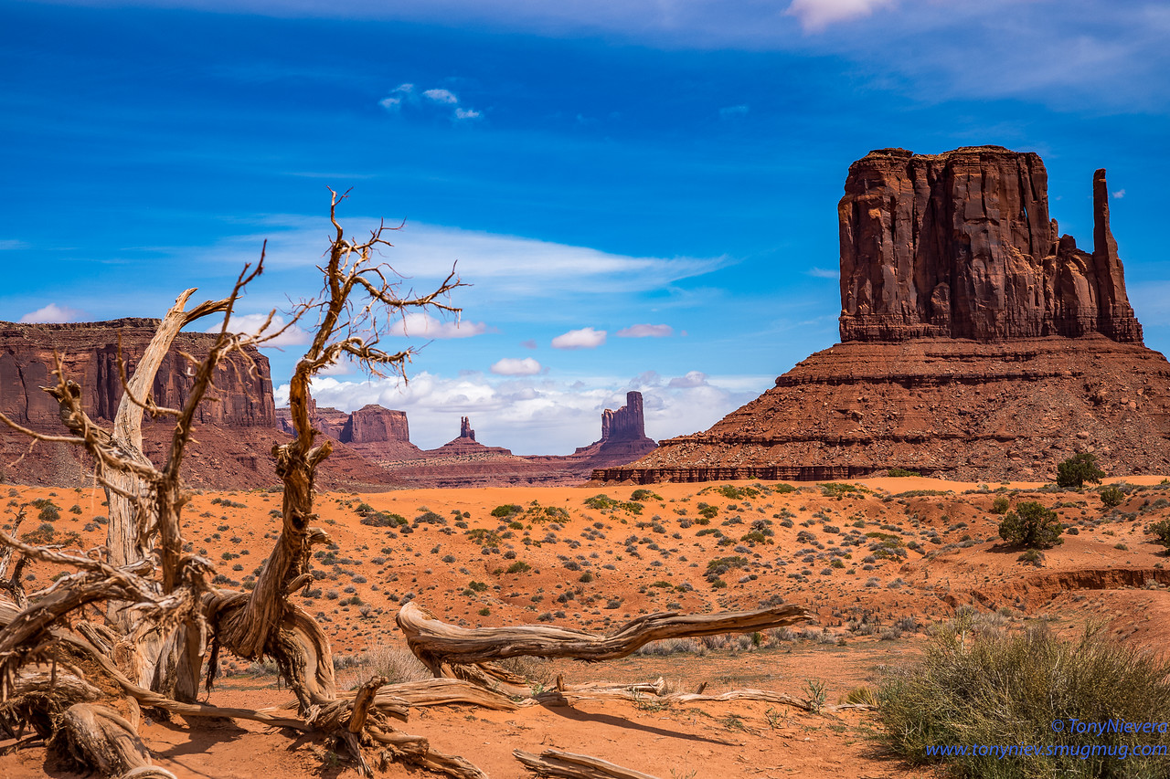 IMAGE: https://photos.smugmug.com/Photography/2019-Monument-Valley/i-92jjmKt/0/0f3d683b/X2/L1007705-X2.jpg