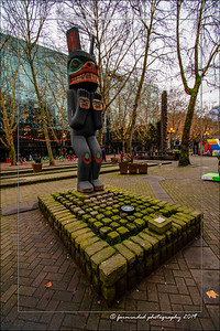 DS5_2516-12x18-01_2019Seattle