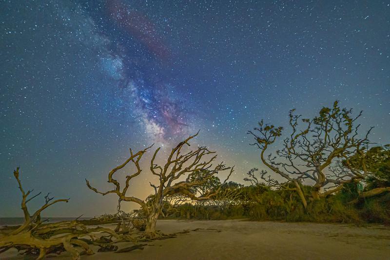 Universe Lights Candelabra Tree