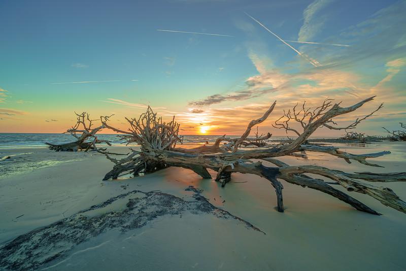 Sky Kiss above Driftwood