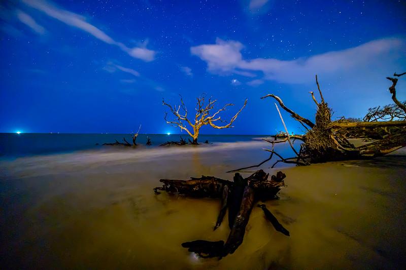 The Star of Driftwood Beach