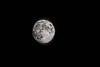 Buck Moon July 4, 2020