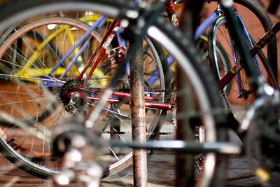 Day Eleven: Bikes