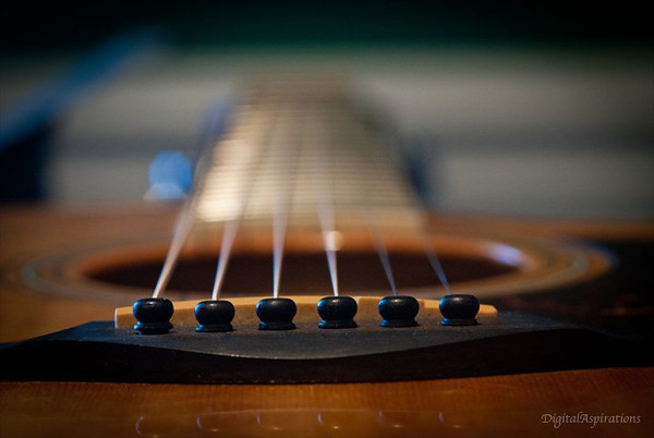 """It all begins with the strings.""<br /> Captured from my twin's guitar as he visited this week."