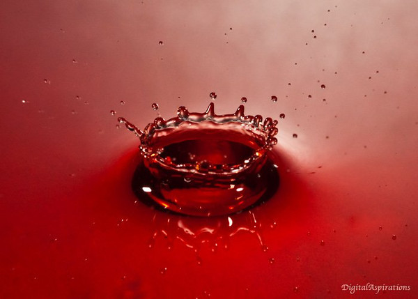 KerSplash!<br /> My first effort at catching a water drop landing. 105 lens, flash fired with the Camera Axe 400 msec after drop is released. (food coloring for the red) More tomorrow.
