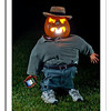 Trick or Tweet!<br /> I put remote flash in a freezer bag and dropped it into the pumpkin for this shot! Happy Howloween!