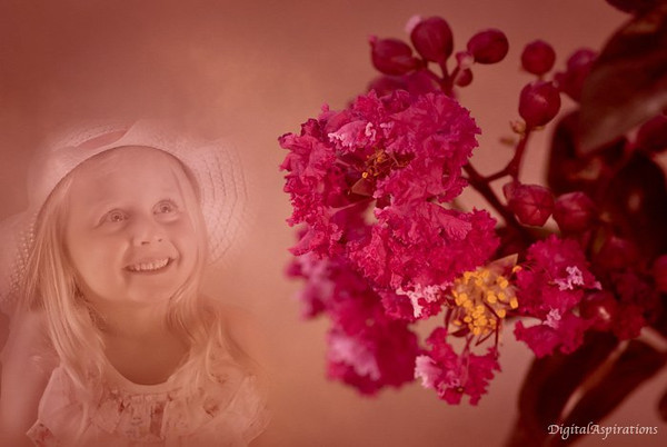 Today's image is a composite of a portrait I took earlier and the blossom I captured yesterday.