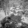 Rose Point Trail - Boyne River