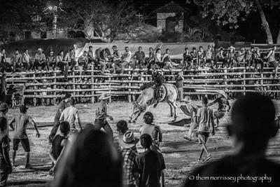 Brasillo Rodeo, bull riders ride, others run when he gets off!