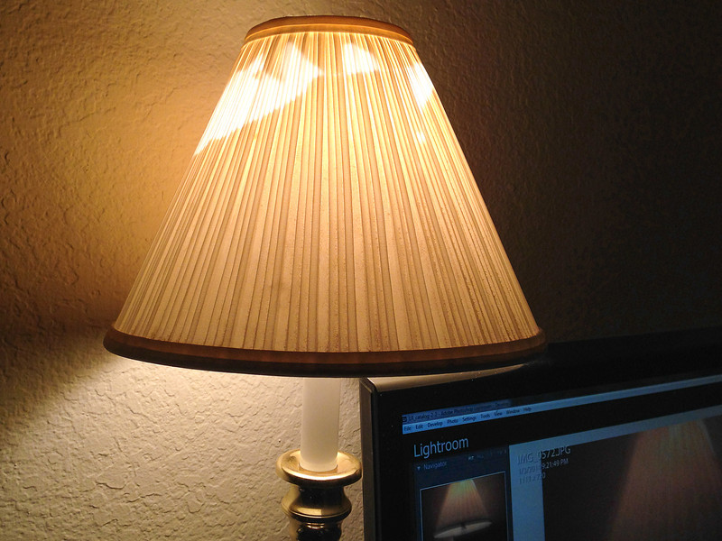 January 3, 2014 -- Broken lampshade. Last minute shot -- almost forgot my goal for this year on the 3rd day.