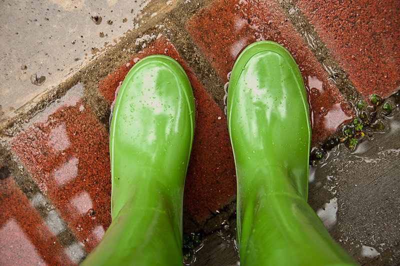 January 25, 2013 -- Today was a green boots kind of day.