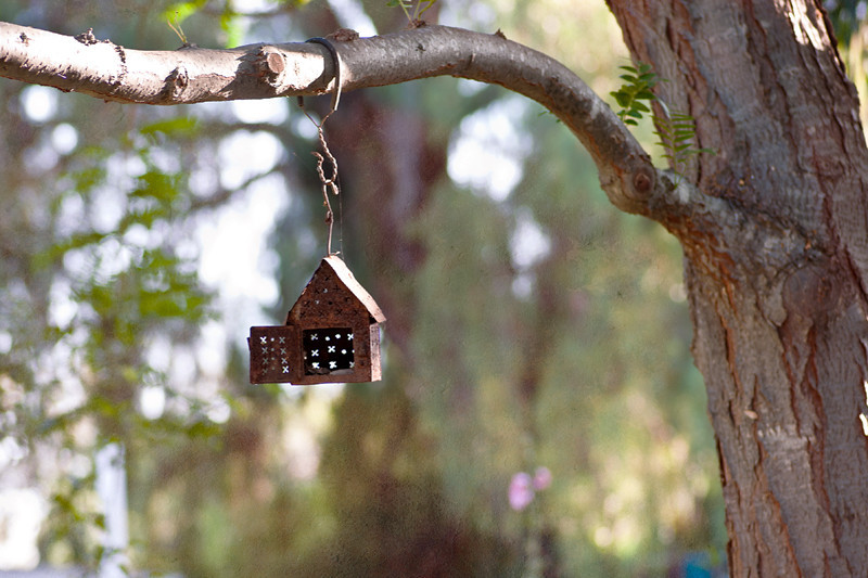 July 14, 2013 -- Birdhouse in Los Rios district