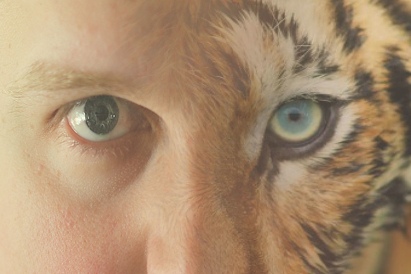 Animal Instinct... 141/365 6/21/13