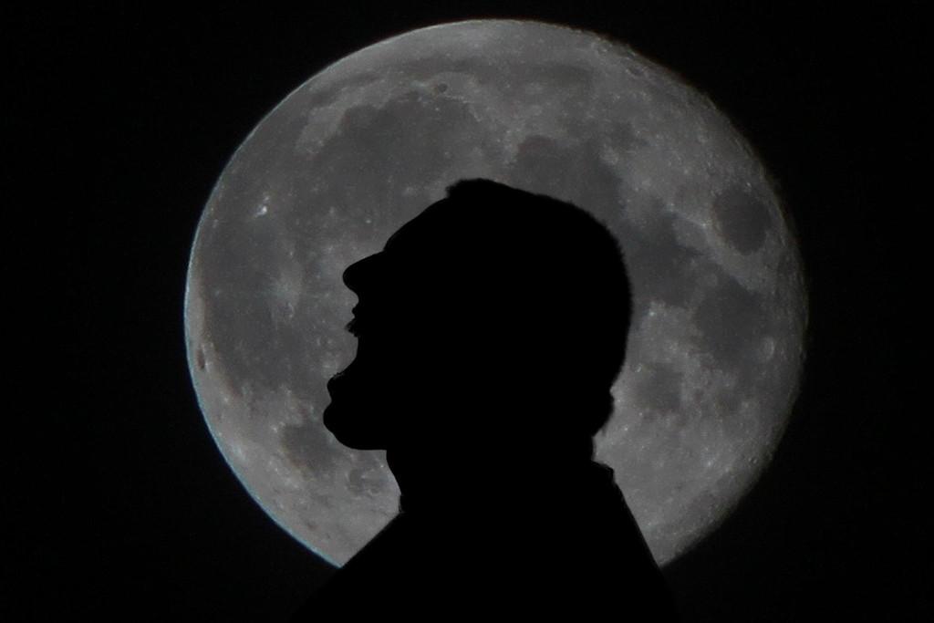 Bark At The Moon.... 262/365 10/20/13
