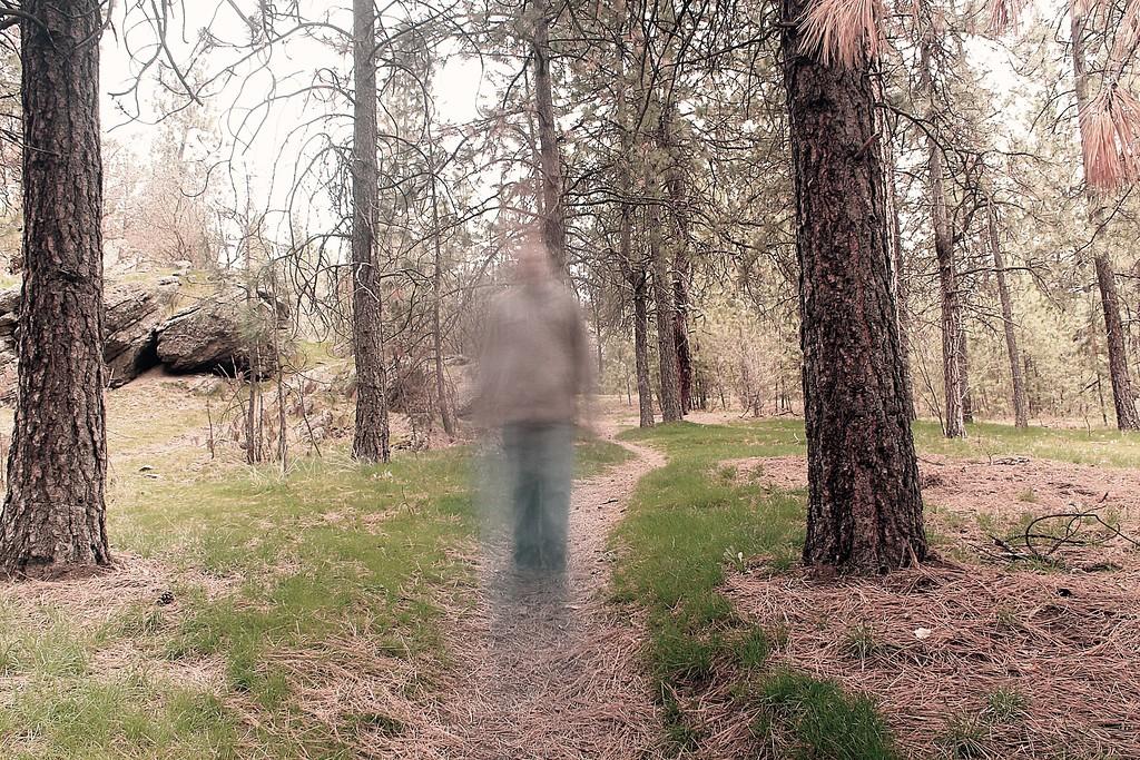 Disturbance In The Woods.... 63/365 4/4/13