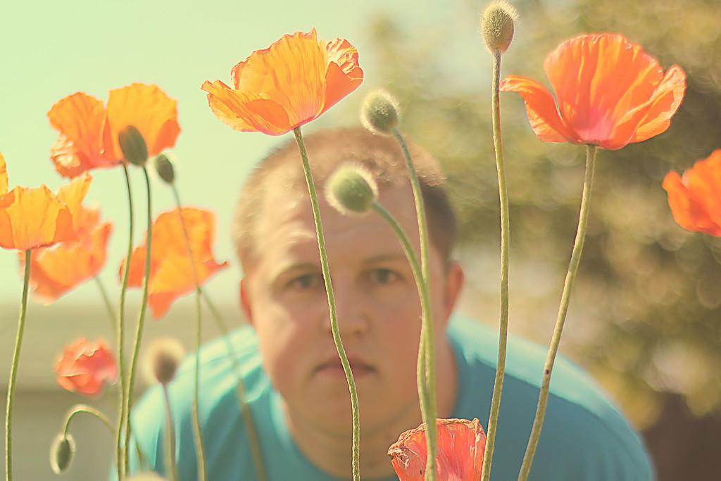 Laying In A Poppy Field.... 109/365 5/20/13