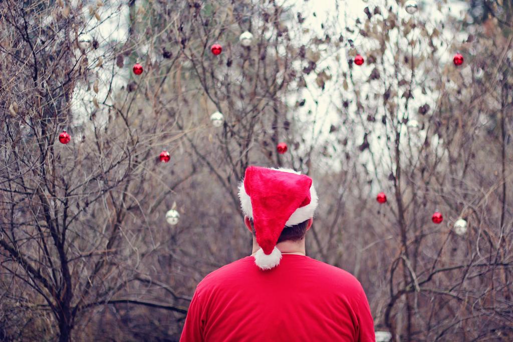Making Christmas.... 303/365 11/30/13