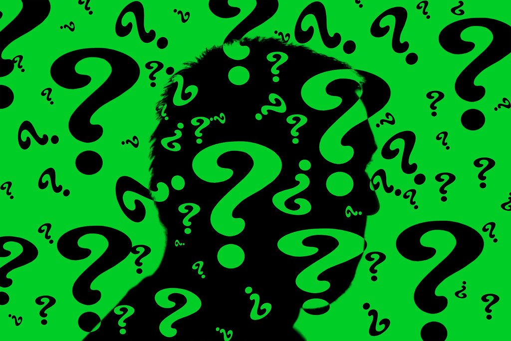 Riddle Me This.... 275/365 11/2/13