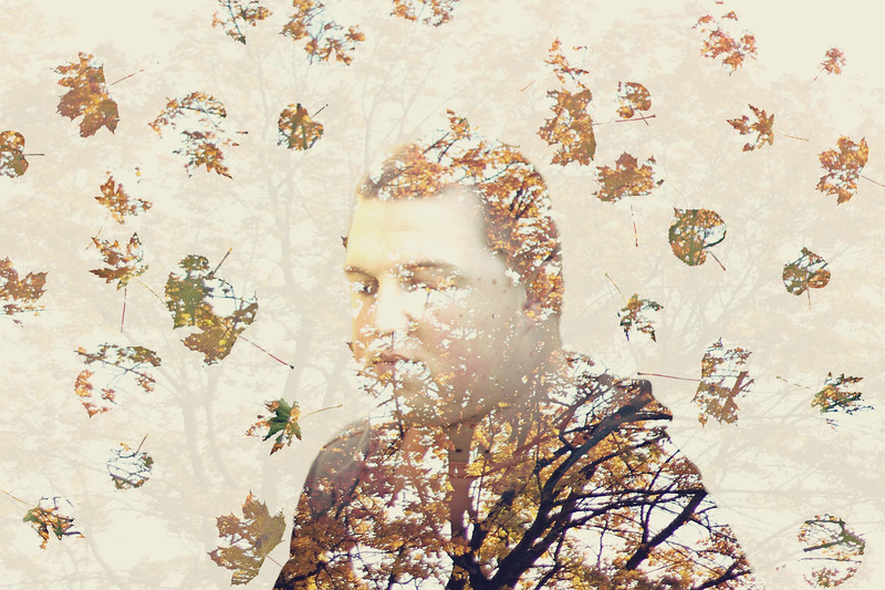 """""""Fall""""ing  Apart.... 255/365 10/13/13"""