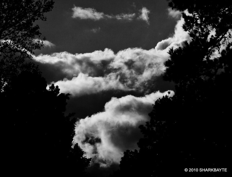 The clouds in black and white. #365Project day 311 (2010.11.07) @sharkbayte<br /> <br /> I'm not sure if it's too dark as I was trying something different and really don't know much about black and white photography. thank you for the comments on my pictures. I posted really late last night for yesterday's shot.