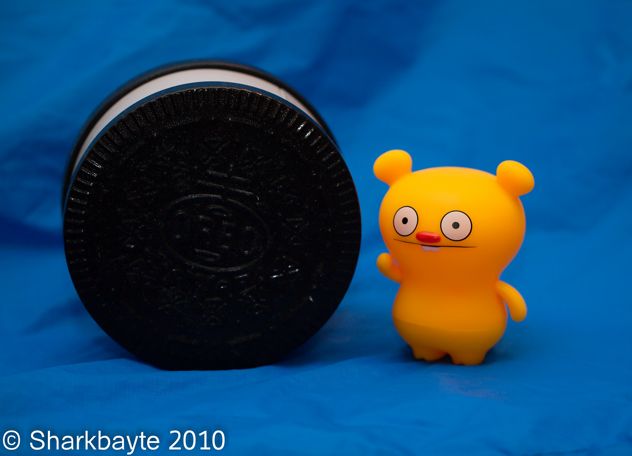 Day 209-Trunko's big find! I hate to ruin his excitement because it's not a cookie, but it has something just as cool inside. #365Project(2010.07.28) settings: 100.0mm f/2.8 1/30s ISO: 200 @sharkbayte