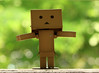 Day 122-Good Morning World!...Danboard was very excited today as it was just perfect!  ISO:800 1/125s f/5.6 Focal Length 100.0mm (2010.05.02)