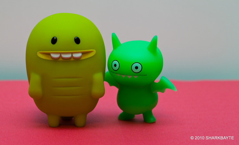 This is the week of introductions. The gang is arriving this week so we are going to introduce them as they arrive. Today, Turtle and Ice Bat showed up. I hope we have room for everyone! Day 312 (2010.11.08) #365Project @sharkbayte<br /> <br /> These two are Turtle and Ice Bat from the uglydoll collections. Turtle is friends with Bossy Bear and Crocadoca, They are from a kids book from David Horvath creator of the Uglydoll Collection. Ice Bat is from series 1 (the ice bats glow in the dark).<br /> <br /> Thank you for all the comments on my picture last night. This one is late today as well, but I have a good reason. My camera had major issues, if it can be fixed I'll use it as a backup. Now I have to learn all about this one.