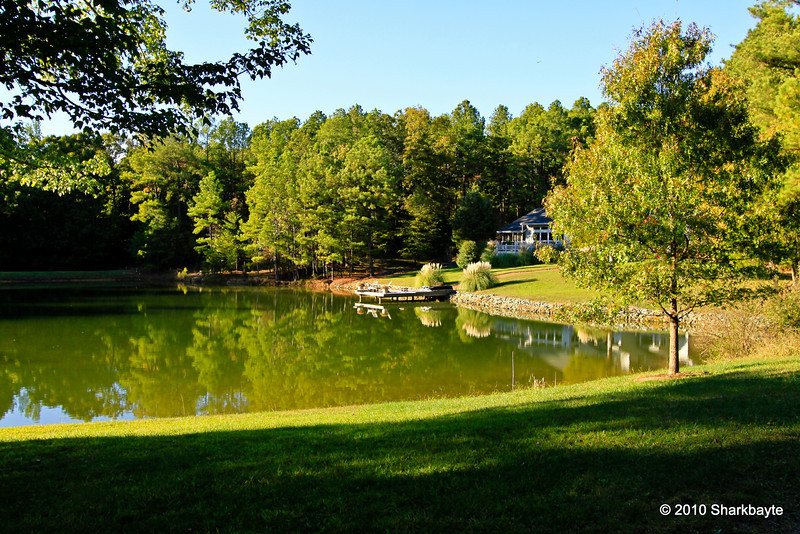 I love this view. This is the second pond on this dead end road. Five houses share this pond. I can only see two from the road. Nice place to nap for sure. #365Project Day 299 (2010.10.26) @sharkbayte