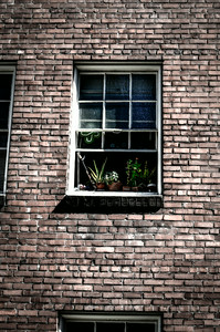 0826 Look Through Any Window