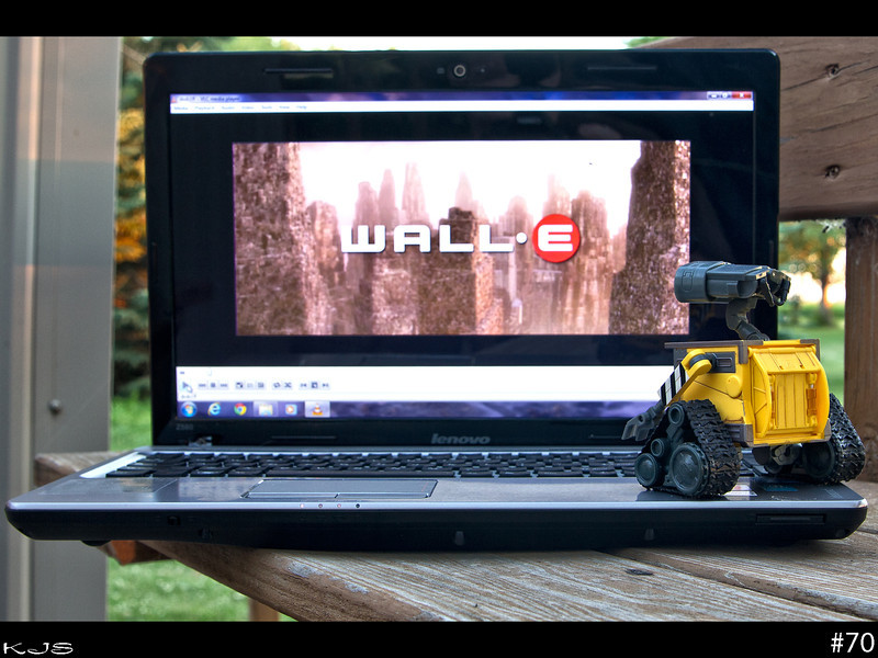 Looking for Wall-e tonight, found him on the back deck watching his favorite movie